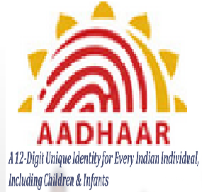 How to Get Aadhaar Card Online | Pediaa.com