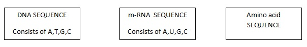 How to find amino acid sequence   Pediaa.com