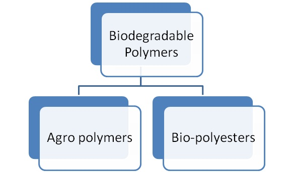 What are Biodegradable Polymers