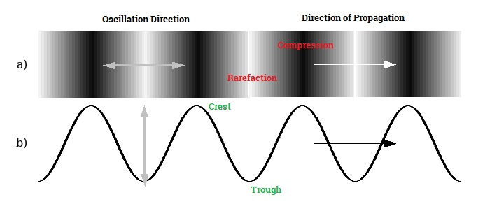 Difference Between Transverse and Longitudinal Waves
