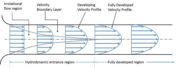 Difference Between Friction and Viscosity - Fluid_flow_through_a_pipe