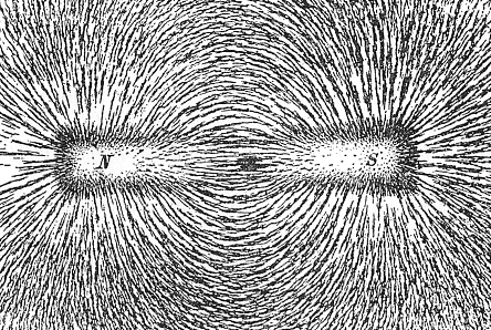 Difference Between Magnetic Field and Magnetic Flux - Iron_filings_showing_the_magnetic_field