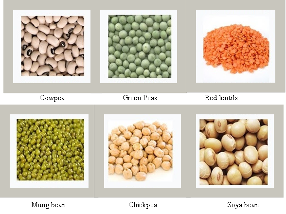 Difference Between Cereals and Pulses -pulses examples