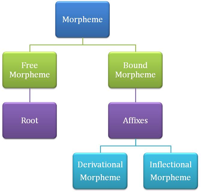 Difference Between Morpheme and Allomorph