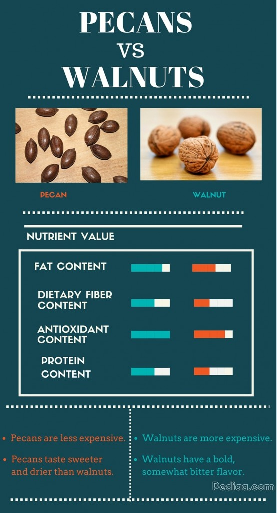 Difference Between Pecans and Walnuts - infographic