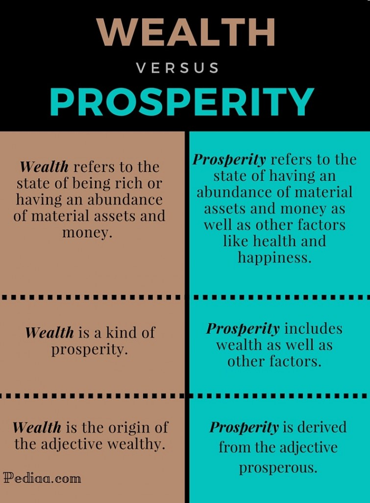 Difference Between Wealth and Prosperity - infograpgic