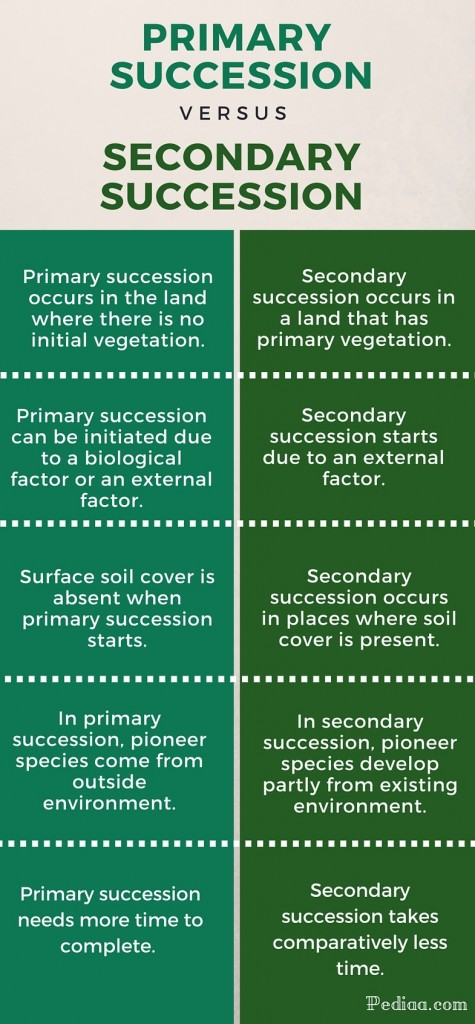 primary and secondary succession essay Aqa english literature coursework word count now carter: november 20, 2017 #essay #dissertation #help complete the interview exercise in your textbook on pgs 216-217.
