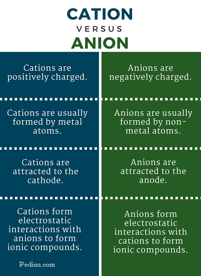 Difference Between Cation and Anion- infographic
