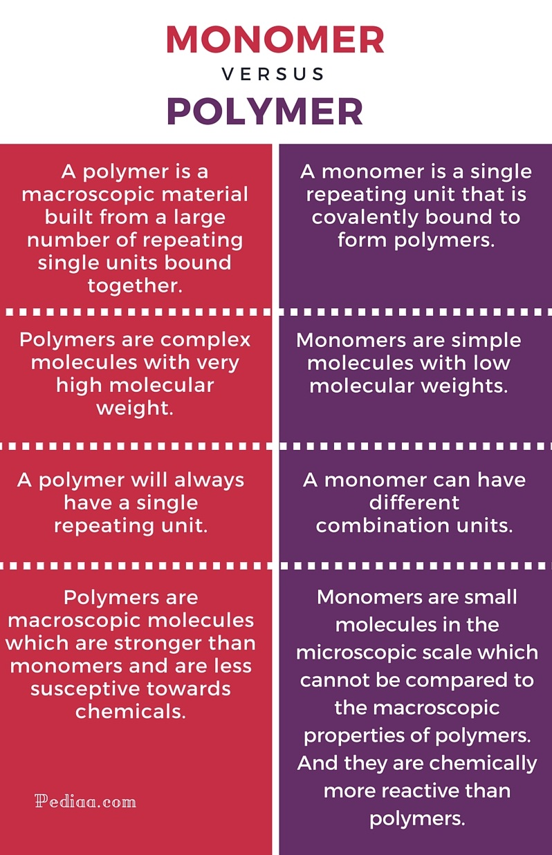 Difference Between Monomer and Polymer - infographic