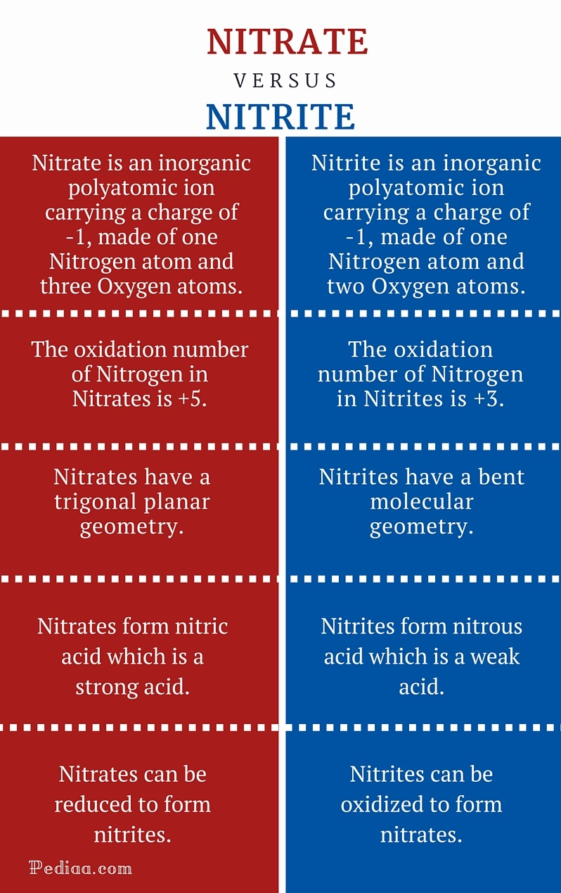 Difference Between Nitrate and Nitrite - infographic