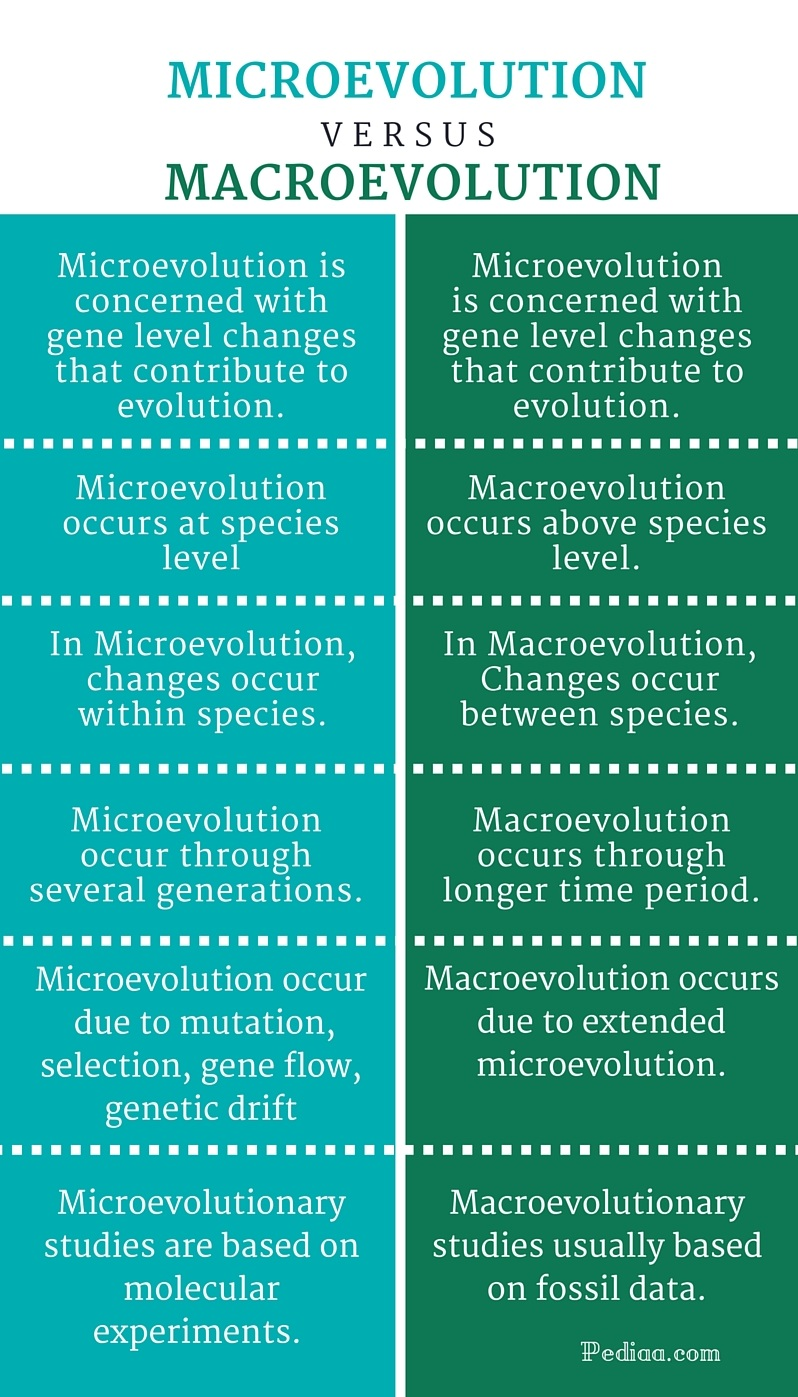 a study of microevolution and macroevolution Study guide questions be able to identify, compare, contrast, and discuss the various mechanisms of microevolution, including: mutation gene flow.
