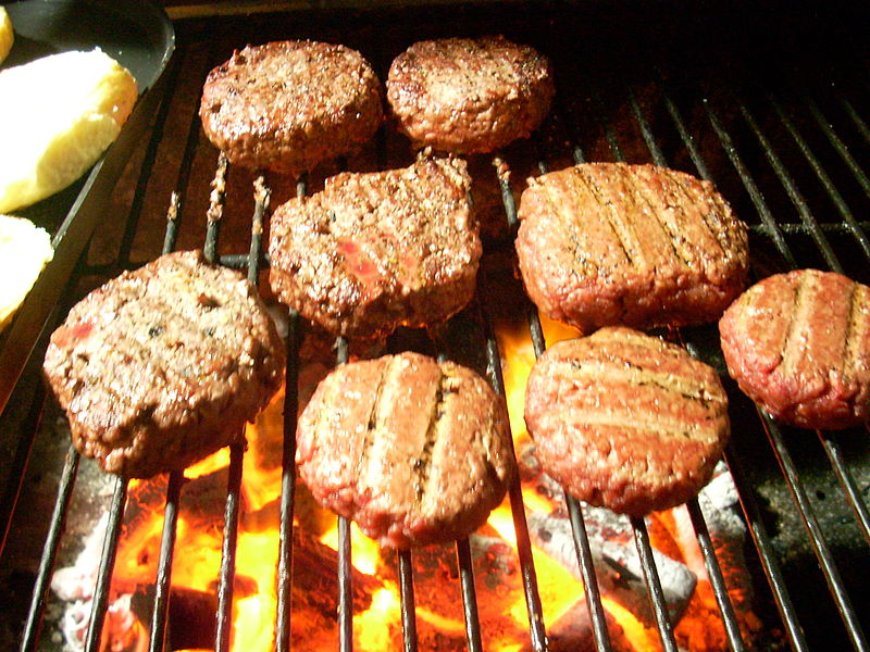 Difference Between Oven and Grill