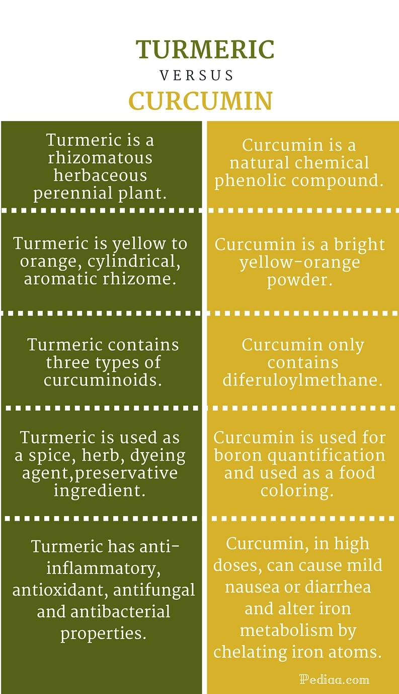 Difference Between Turmeric and Curcumin - infographic