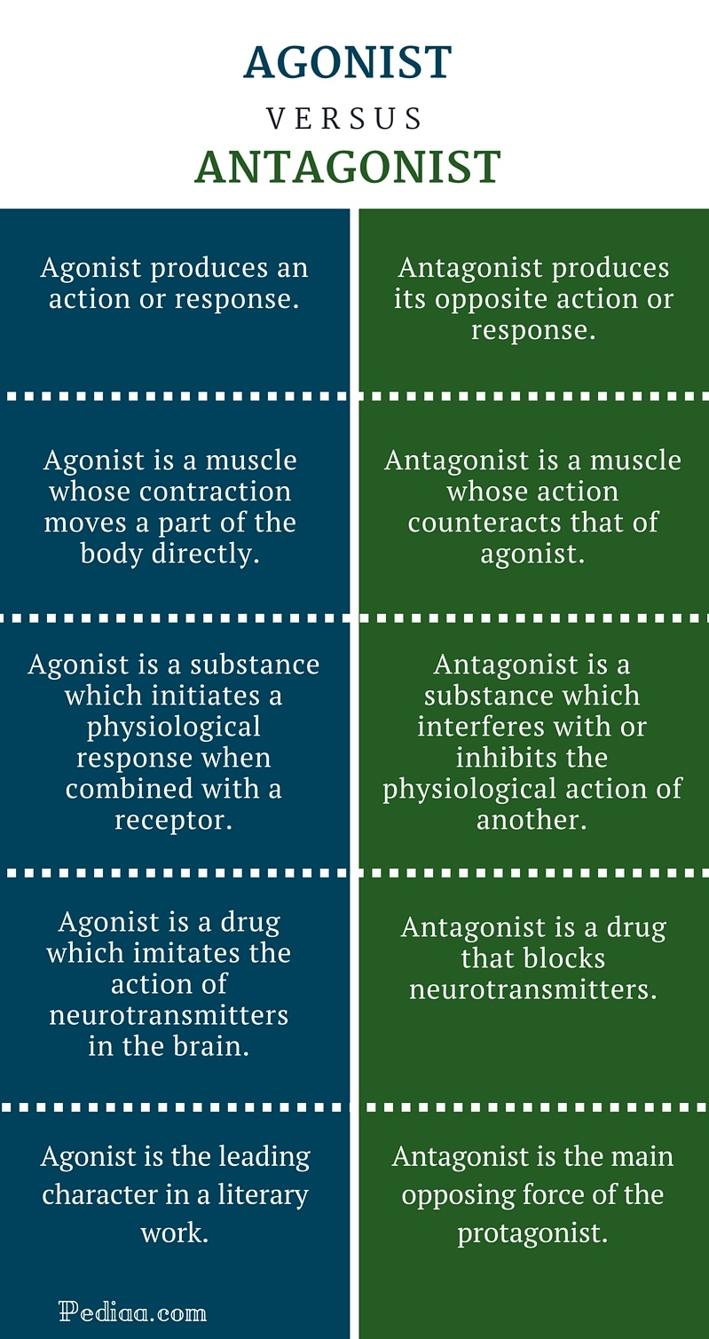 Difference Between Agonist And Antagonist