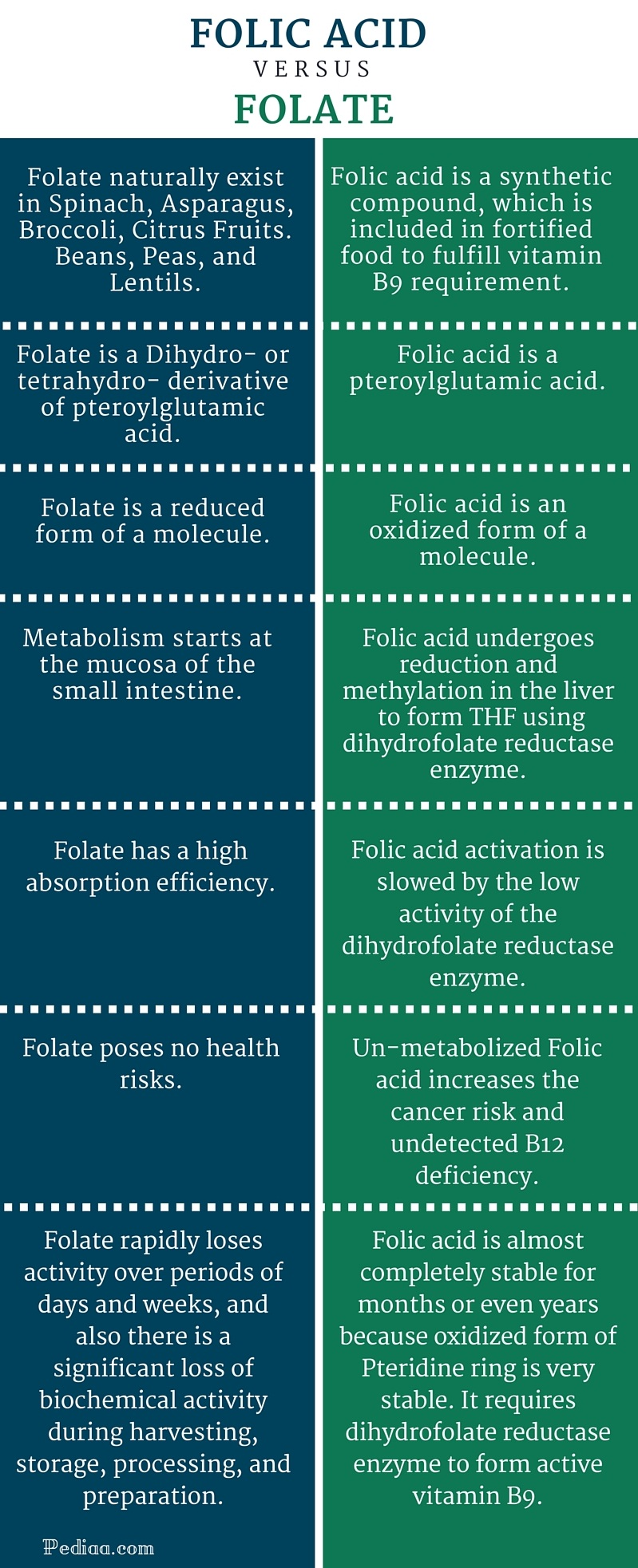 Difference Between Folic Acid and Folate - infographic