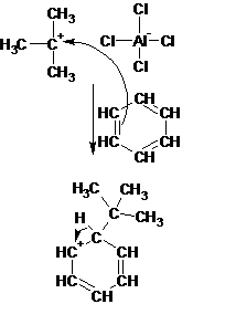 Difference Between Alkylation and Acylation