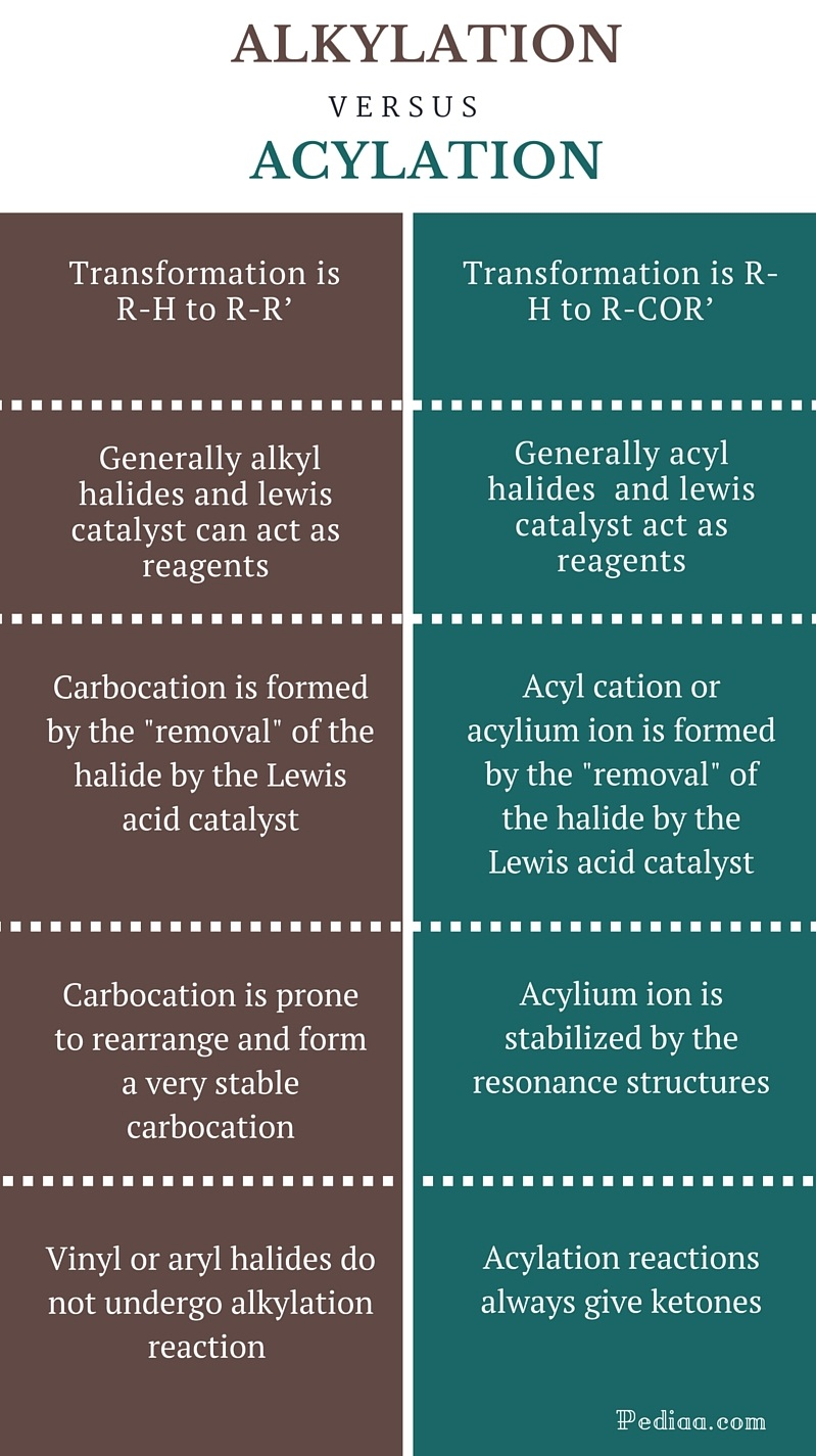 Difference Between Alkylation and Acylation - infographic