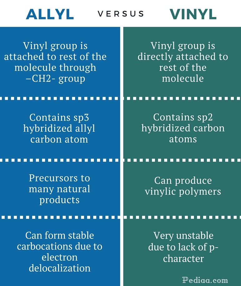 Difference Between Allyl And Vinyl Pediaa Com