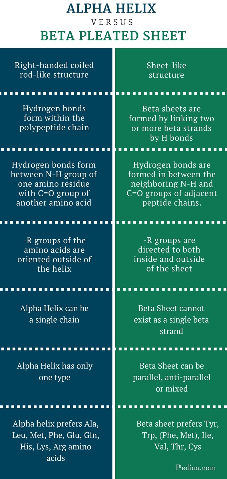 Difference Between Alpha Helix and Beta Pleated Sheet -infographic
