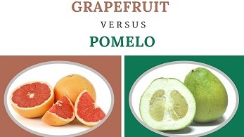 Difference Between Grapefruit and Pomelo_Grapefruit vs Pomelo Comparison