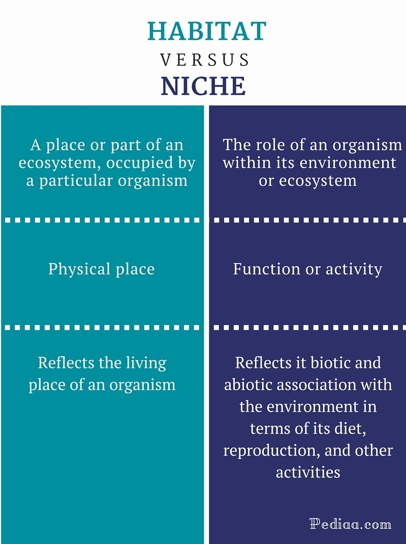 Difference Between Habitat and Niche - infographic