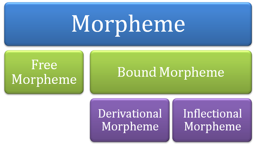 morpheme In english grammar and morphology, a morpheme is a meaningful linguistic unit consisting of a word (such as dog) or a word element (such as the -s at the end of dogs) that can't be divided into smaller meaningful parts adjective: morphemic morphemes are the smallest units of meaning in a.