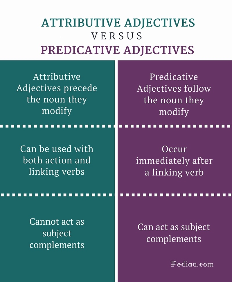 difference between attributive and predicative adjectives | learn