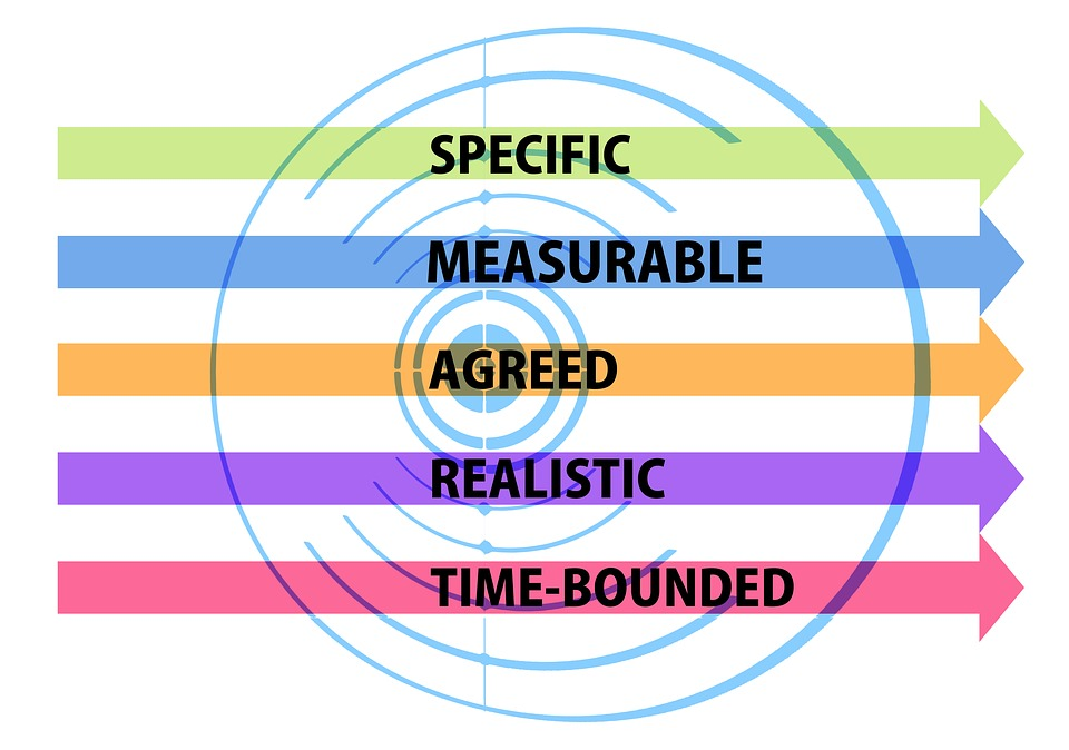 Difference Between Goal and Objective