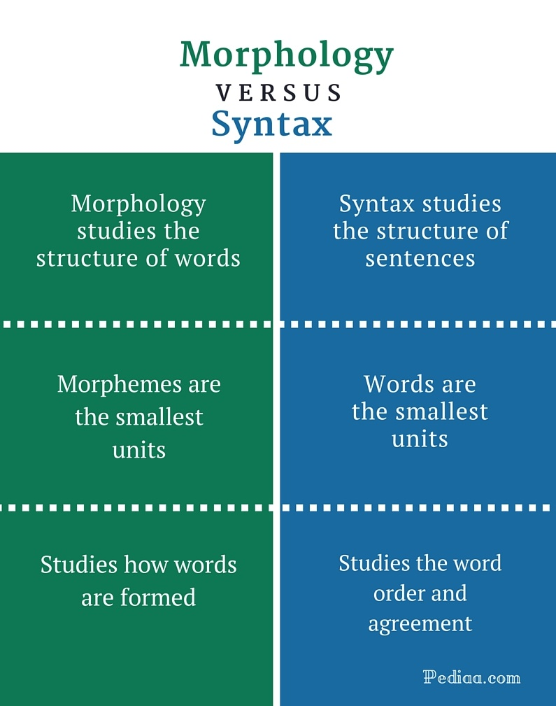 Difference Between Morphology and Syntax - infographic