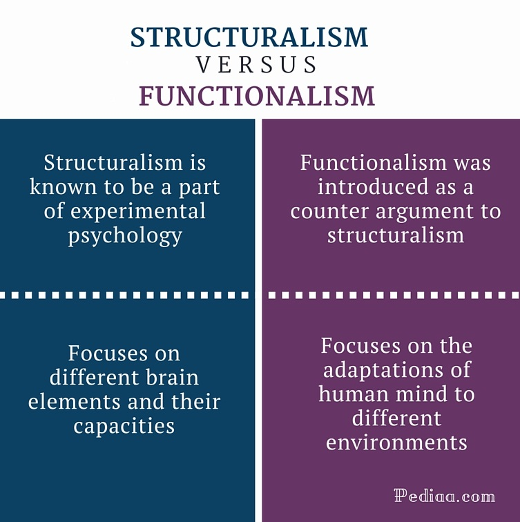 functionalism similarities between society and an Functionalism functionalism attempts to understand how all parts of a society (eg, institutions such as family, education, economy, and the polity or state) fit togeter to form a smoothly running social system.