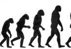 Difference Between Darwinism and Lamarckism