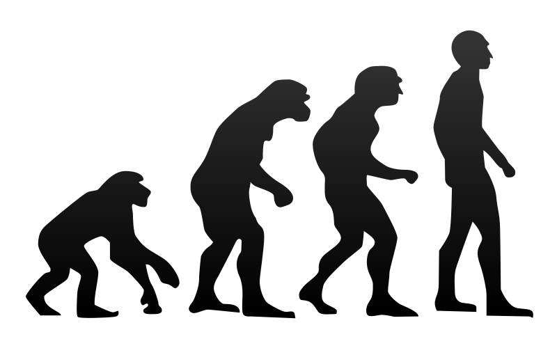 Difference Between Evolution and Revolution | Definition, Meaning ...