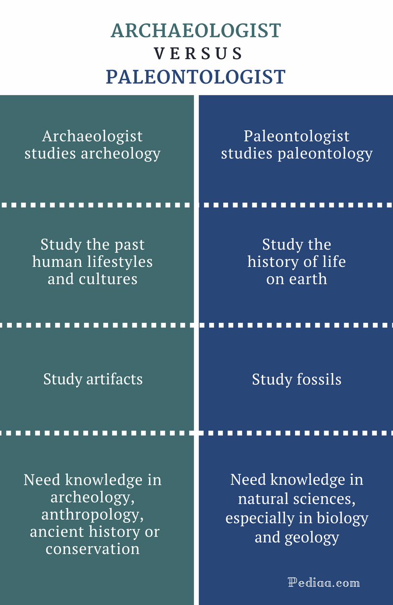 Difference Between Archaeologist and Paleontologist - Comparison Summary