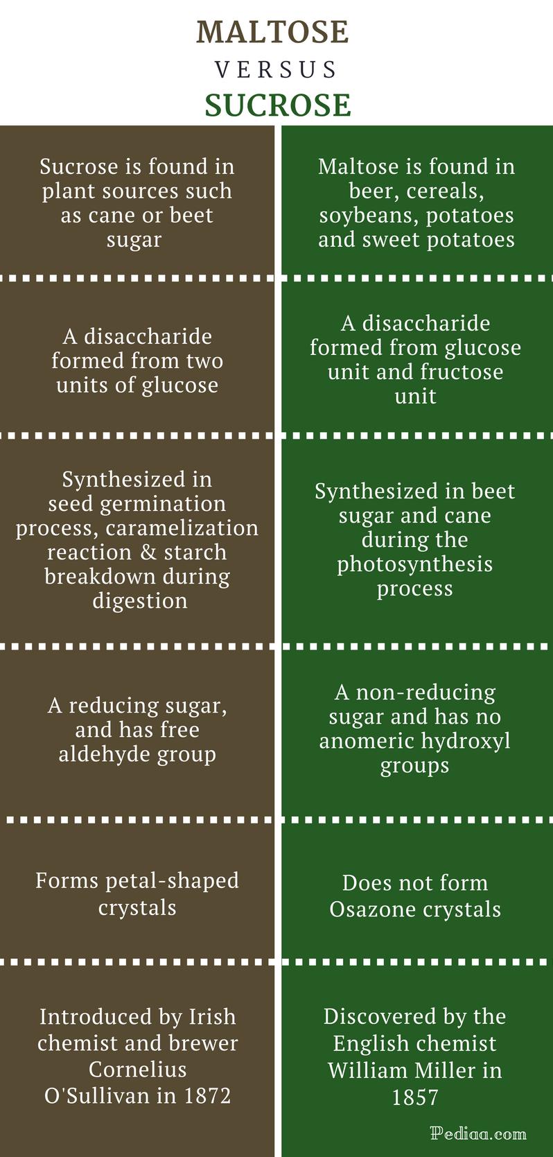 Difference Between Maltose and Sucrose - Maltose vs Sucrose Comparison Summary