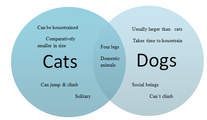 compare and contrast essay of cats and dogs