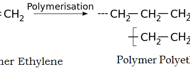 Main Difference - Homopolymer vs Copolymer