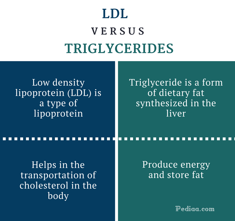 Difference Between LDL and Triglycerides - Comparison Summary