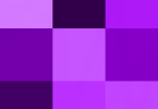 Difference Between Lilac and Purple