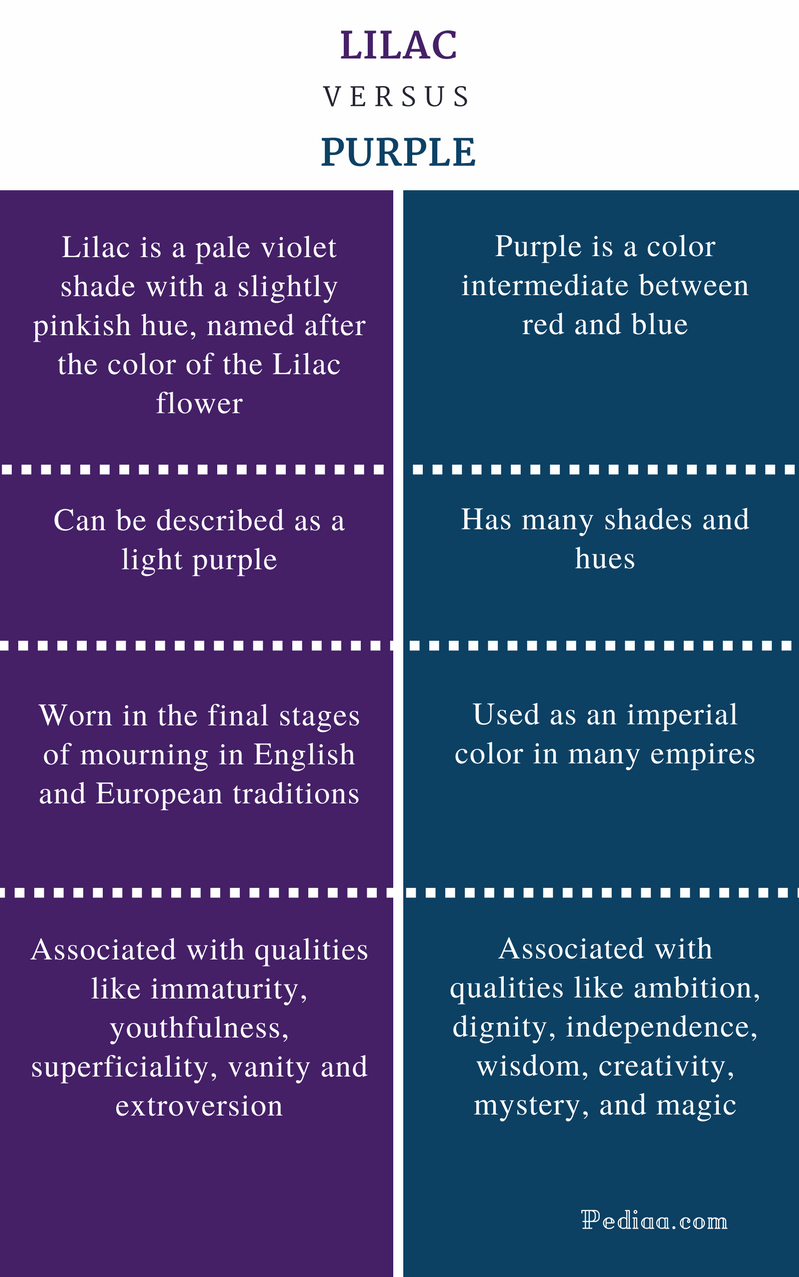 Difference Between Lilac and Purple - Comparison Summary