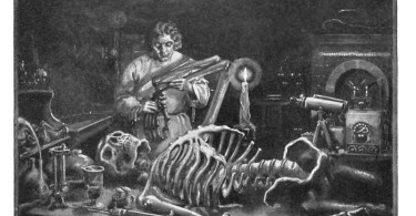Similarities Between Frankenstein and the Monster