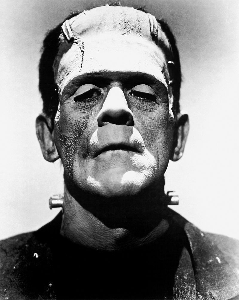 Similarities Between Frankenstein and the Monster - q