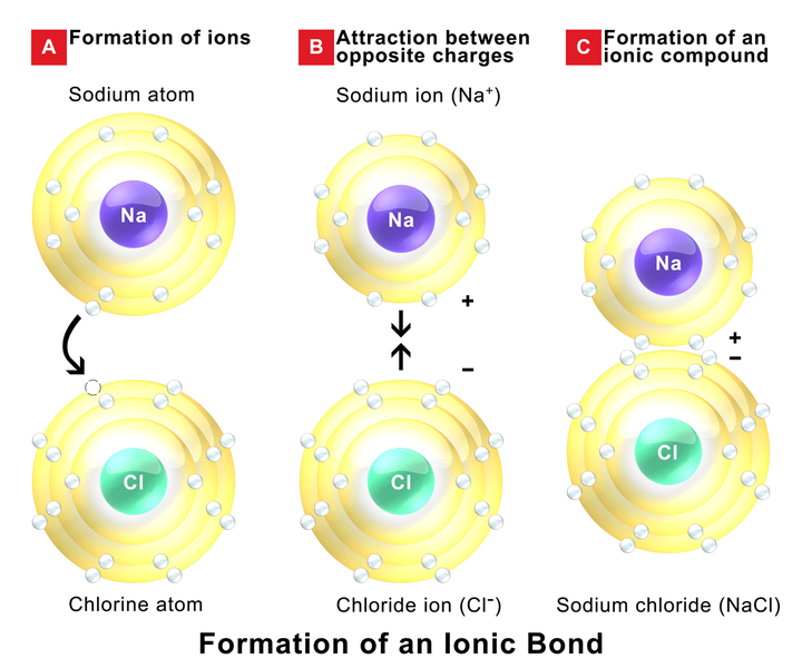 Main Difference - Intermolecular vs Intramolecular Forces