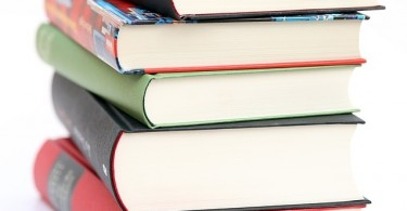 Difference Between Introduction and Literature Review