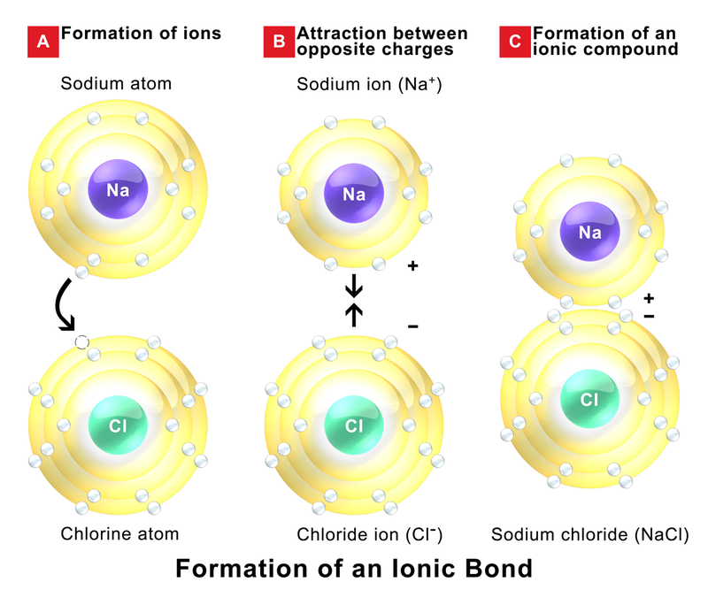Difference Between Ionic Covalent and Metallic Bonds - 1