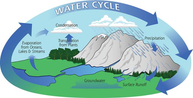 Key Difference - Evaporation vs Distillation