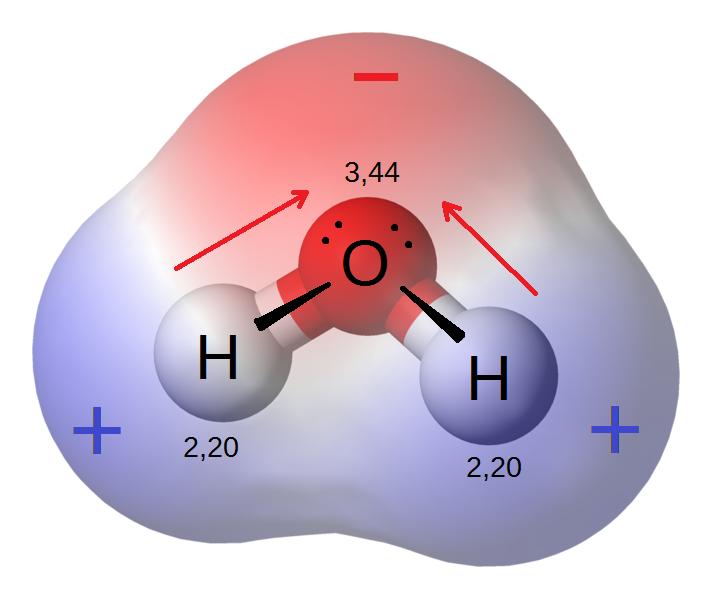 How Do Polar and Nonpolar Molecules Interact With Each Other - 1