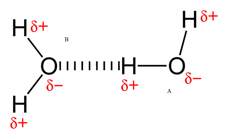 How Do Polar and Nonpolar Molecules Interact With Each Other - 5