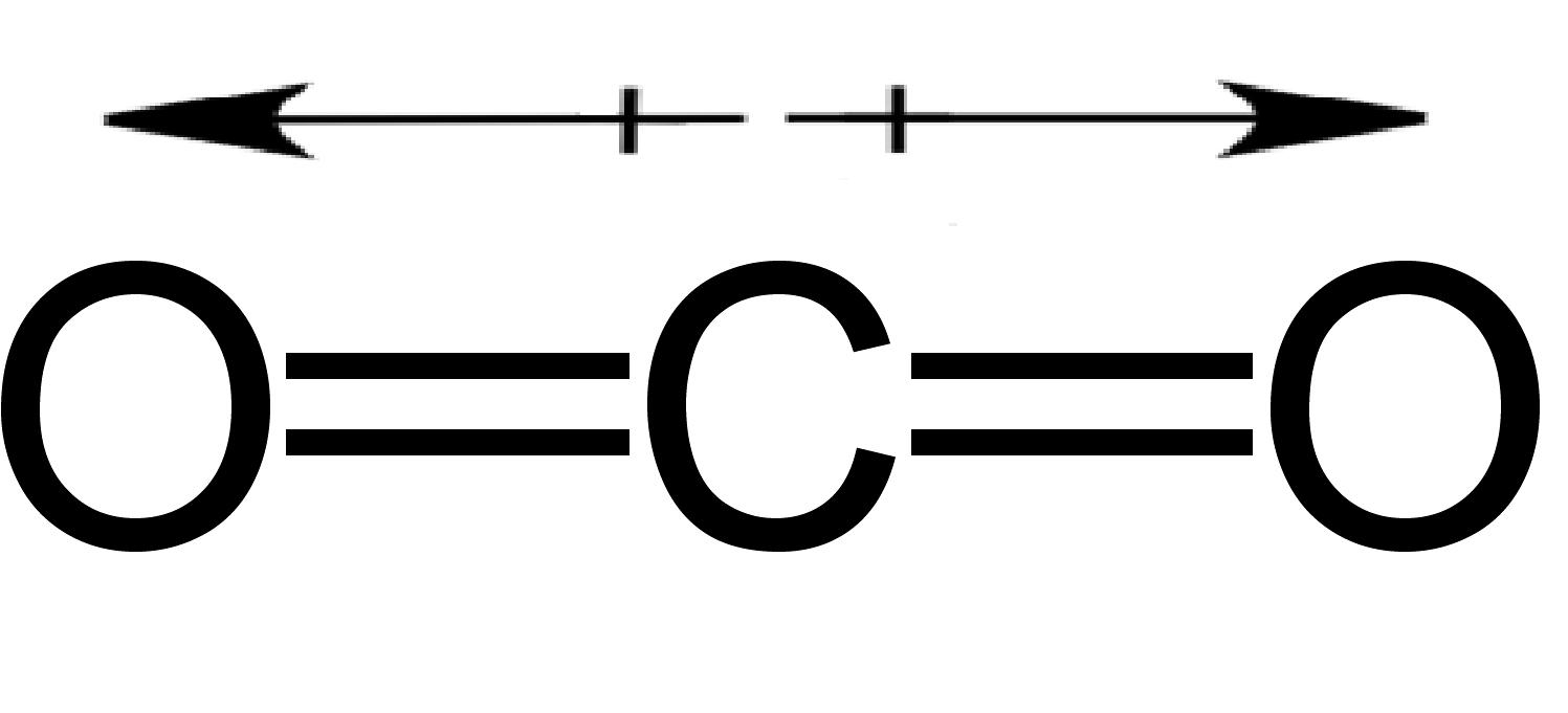 How Does Molecular Shape Affect Polarity - 5