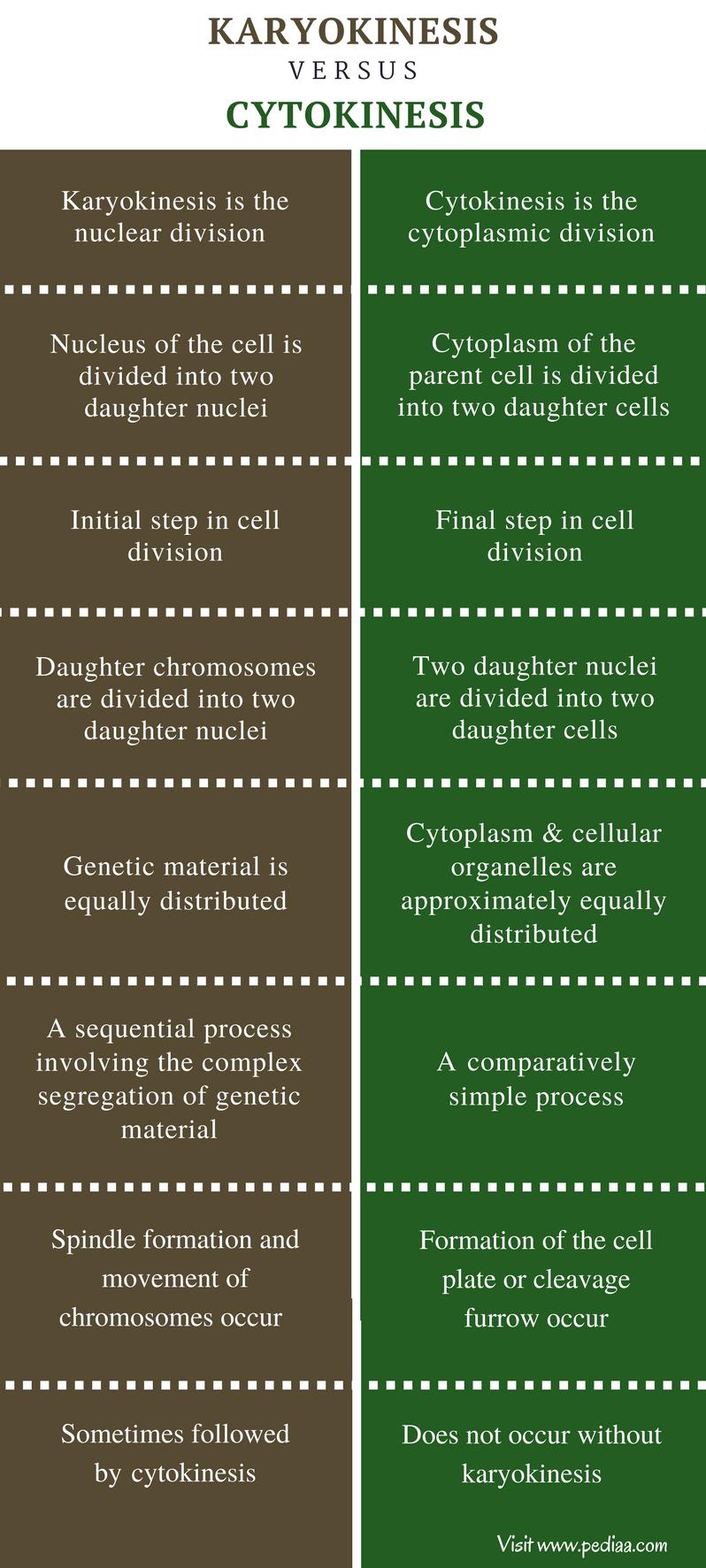 Difference Between Karyokinesis and Cytokinesis - Comparison Summary