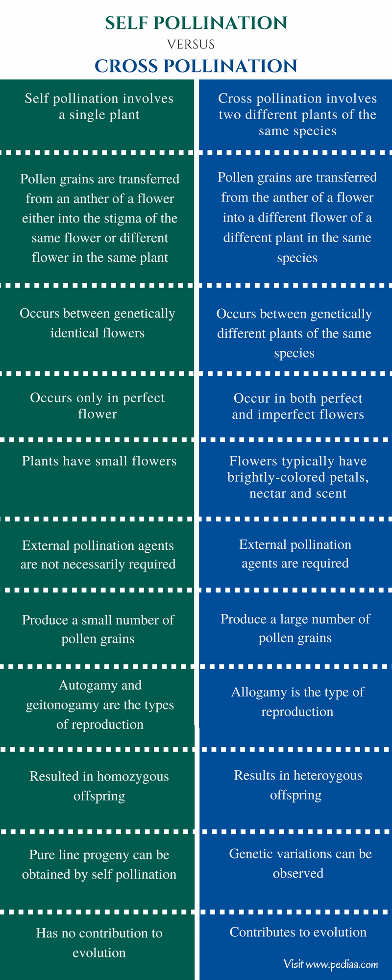 Difference Between Self and Cross Pollination - Comparison Summary